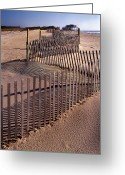 Beach Pictures Greeting Cards - Serpentine Greeting Card by Skip Willits