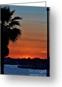 Jensen Beach Greeting Cards - Setting Sun From Jensen Causeway Greeting Card by Lynda Dawson-Youngclaus
