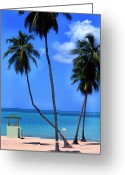 Puerto Rico Greeting Cards - Seven Seas Beach Puerto Rico Greeting Card by Thomas R Fletcher