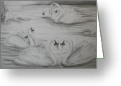 Pads Drawings Greeting Cards - Seven Swans a Swimming Greeting Card by Carol Frances Arthur