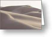 Pacific Coast States Greeting Cards - Several Sand Dunes Appear To Rise Greeting Card by George F. Mobley