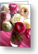 Pink Framed Prints Greeting Cards - Shades of Pink Greeting Card by Kathy Yates