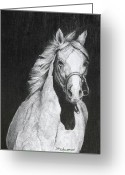 Cowboy Pencil Drawing Greeting Cards - Shadow Greeting Card by David Ackerson