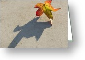 Claire Copley Greeting Cards - Shadow of a Leaf Greeting Card by Pixie Copley