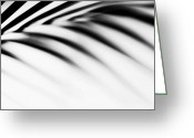Best Seller Greeting Cards - Shadow Zen. Palm Leaf. Monochrome Greeting Card by Jenny Rainbow