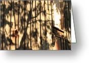 Tuolumne Greeting Cards - Shadows and Wall Greeting Card by Troy Montemayor