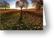 Bill Wakeley Greeting Cards - Shadows Greeting Card by Bill  Wakeley