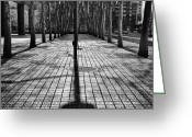 Shadows Greeting Cards - Shadows on the ground Greeting Card by John Farnan