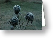 Suspicion Greeting Cards - Shadowy Frozen Pods from the Darkside Greeting Card by Douglas Barnett
