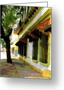 Darian Day Greeting Cards - Shady Street by Darian Day Greeting Card by Olden Mexico