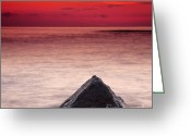 Twilight Greeting Cards - Shark Fin Greeting Card by Evgeni Dinev