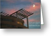 After Sunset Greeting Cards - Sharpshooter Greeting Card by Susan Isakson