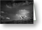Sheep Greeting Cards - Sheep Clouds Greeting Card by Dorit Fuhg