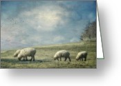 Kathy Jennings Greeting Cards - Sheep On The Hill Greeting Card by Kathy Jennings