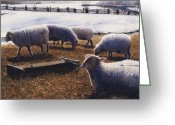Photo-realism Painting Greeting Cards - Sheepish Greeting Card by Denny Bond