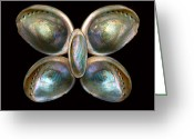 Biologist Greeting Cards - Shell - Conchology - Devine Pearlescence Greeting Card by Mike Savad