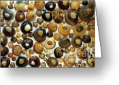 Shellfish Greeting Cards - Shell Background Greeting Card by Carlos Caetano