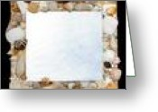 Shells Glass Art Greeting Cards - Shell MIrror Greeting Card by Diane Morizio