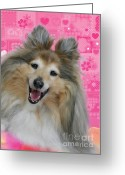 Portraits Greeting Cards - Sheltie Smile Greeting Card by Christine Till