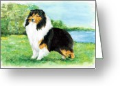 Unique Gifts Greeting Cards - Sheltie Wait Greeting Card by Kathleen Sepulveda