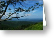 Shenandoah Greeting Cards - Shenandoah Beauty Greeting Card by Joyce L Kimble