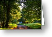 Shenandoah Greeting Cards - Shenandoah Summer Greeting Card by Joyce L Kimble