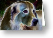 Sheepdog Mixed Media Greeting Cards - Shepered Dog No. 01 Greeting Card by Ramon Labusch