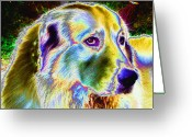 Sheepdog Mixed Media Greeting Cards - Shepered Dog No. 02 Greeting Card by Ramon Labusch