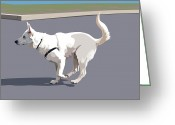 Dog Portrait Digital Art Greeting Cards - Shepherd Sprint Greeting Card by Kris Hackleman