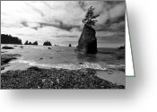 Shi Greeting Cards - Shi Shi Beach Greeting Card by Ian Stotesbury