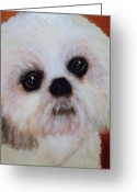 Dogs Pastels Greeting Cards - Shih-Tzu - Caddy Mo Greeting Card by Laura  Grisham