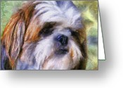 Artistic Painting Greeting Cards - Shih Tzu Portrait Greeting Card by Jai Johnson