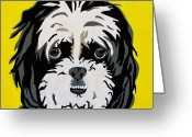 Pets Portraits Greeting Cards - Shih tzu Greeting Card by Slade Roberts