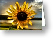Oklahoma Landscape Greeting Cards - Shine Down Greeting Card by Karen M Scovill