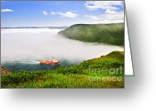 Signal Photo Greeting Cards - Ship entering the Narrows of St Johns Greeting Card by Elena Elisseeva