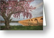 Harrisburg Greeting Cards - Shipoke in Spring Greeting Card by Lori Deiter