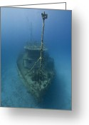 Ship-wreck Greeting Cards - Shipwreck Greeting Card by Aleksandra Bartnicka