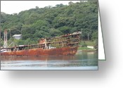 Ship-wreck Greeting Cards - Shipwreck Greeting Card by Vijay Sharon Govender