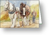 Graphite Mixed Media Greeting Cards - Shire Horses Greeting Card by Morgan Fitzsimons