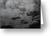 Window Prints Posters Greeting Cards - Shore Of Cracks Greeting Card by Jerry Cordeiro
