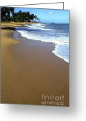 Puerto Rico Greeting Cards - Shoreline along Pinones Greeting Card by Thomas R Fletcher