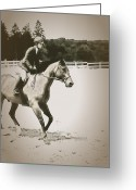 Horse Show Greeting Cards - Showing Greeting Card by Karol  Livote
