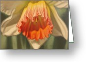 Flower. Petals Pastels Greeting Cards - Showing Off Greeting Card by Melissa Tobia
