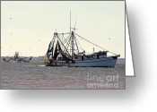East Coast Digital Art Greeting Cards - Shrimping Season - Digital Art Greeting Card by Al Powell Photography USA