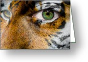Siberian Tiger Greeting Cards - Siberian Man Greeting Card by Semmick Photo