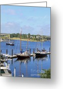 Boats Greeting Cards - Side by Side III Greeting Card by Suzanne Gaff