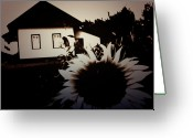 Canadian Photographer Greeting Cards - Side of the Sun Greeting Card by Jerry Cordeiro