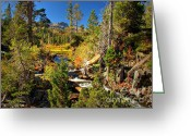 Nevada Greeting Cards - Sierra Nevada Fall Beauty at Lily Lake Greeting Card by Scott McGuire