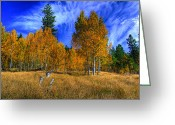 Aspen Trees Greeting Cards - Sierra Nevada Fall Colors Lake Tahoe Greeting Card by Scott McGuire