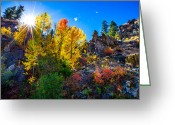 Aspen Trees Greeting Cards - Sierra Nevada Fall Colors Lassen County California Greeting Card by Scott McGuire